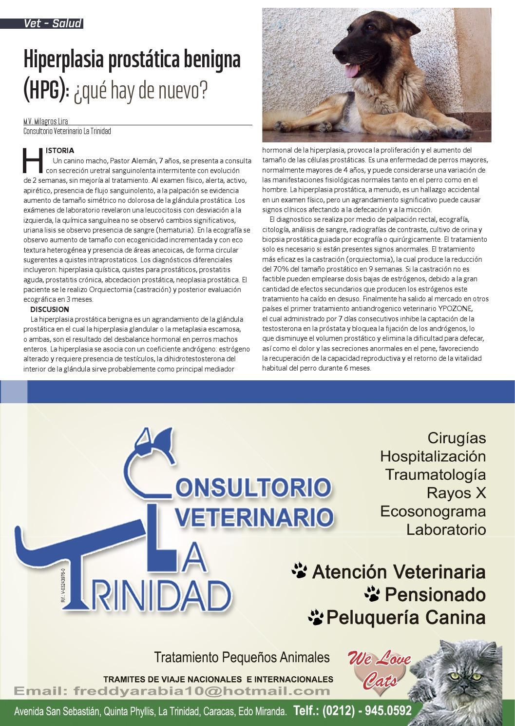 tratamiento de la hiperplasia prostática benigna del perro