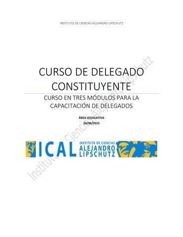 Modulo 1 2 Y 3 Curso Delegado Ical By Rodrigo Cosimo Issuu