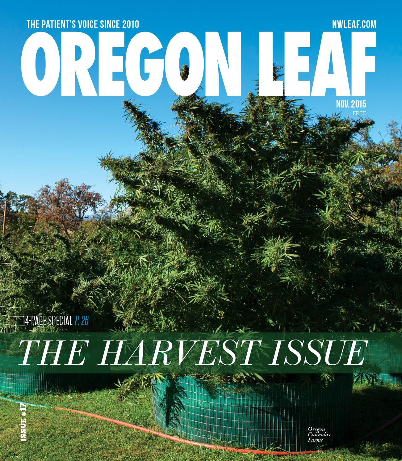 Oregon Leaf - November 2015 by Northwest Leaf / Oregon Leaf