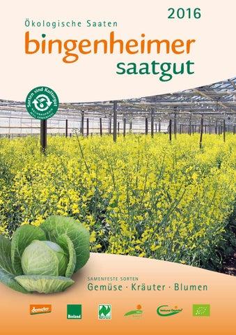 Bingenheimer Saatgut 1 T/üte Wunder von Kelvedon Markerbse