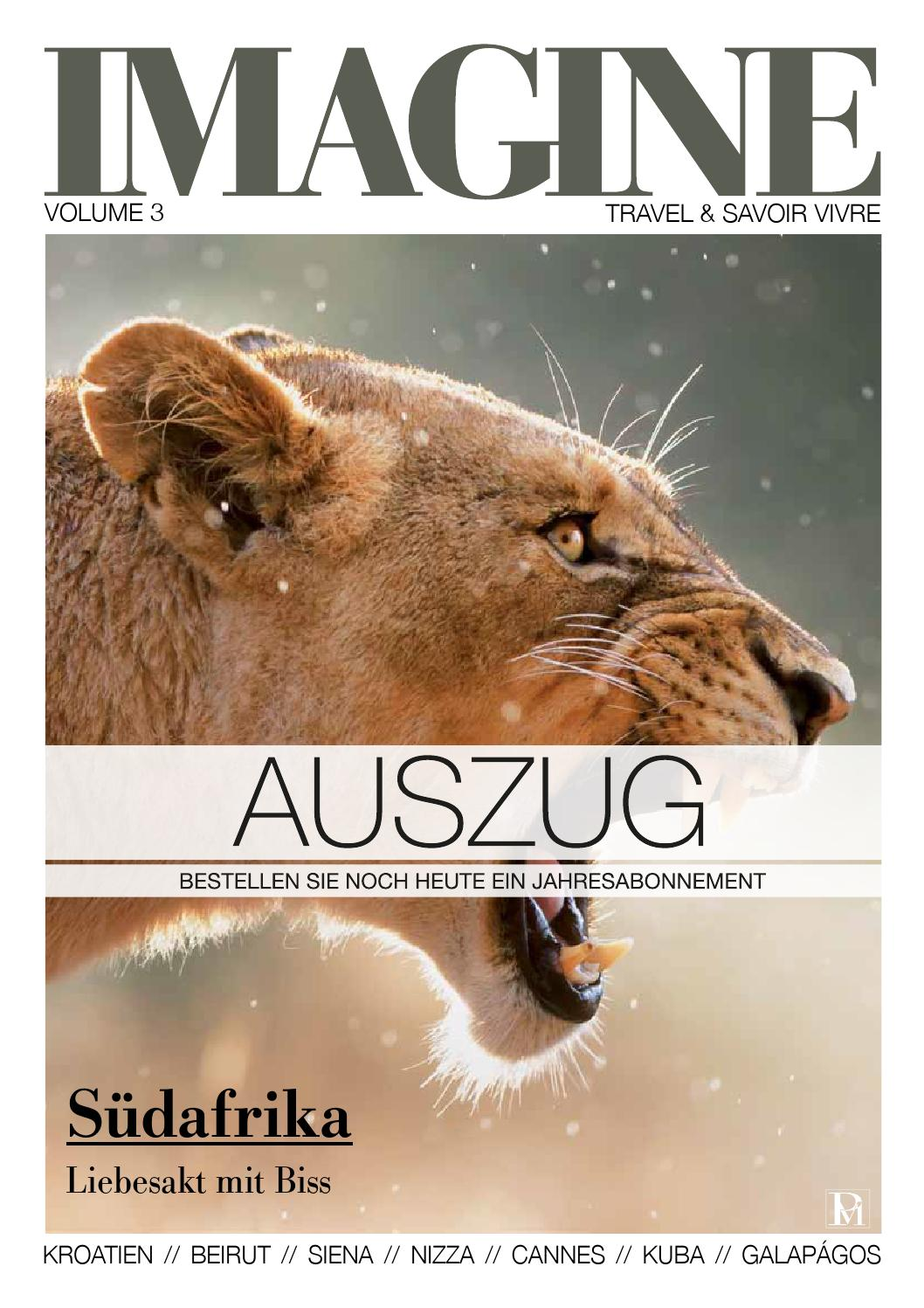 IMAGINE 03/11 Volume 3 Auszug by rundschauMEDIEN AG - issuu