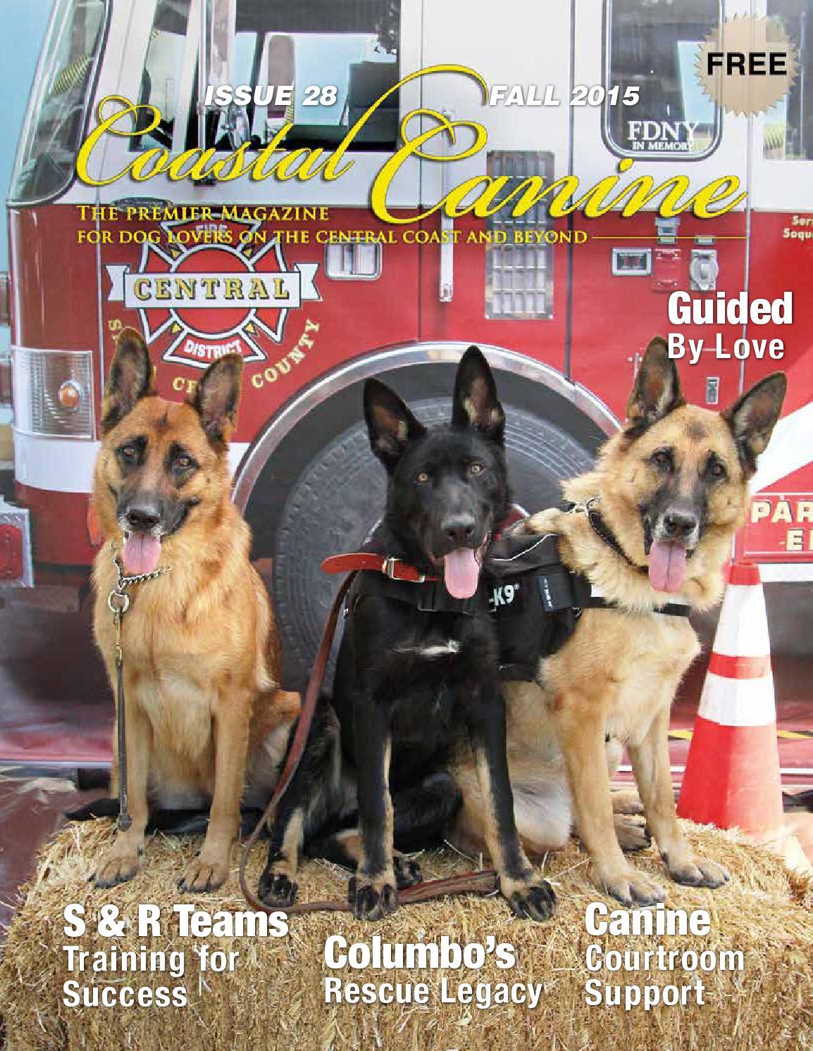 coastal canine magazine fall 2015 by carie broecker issuu