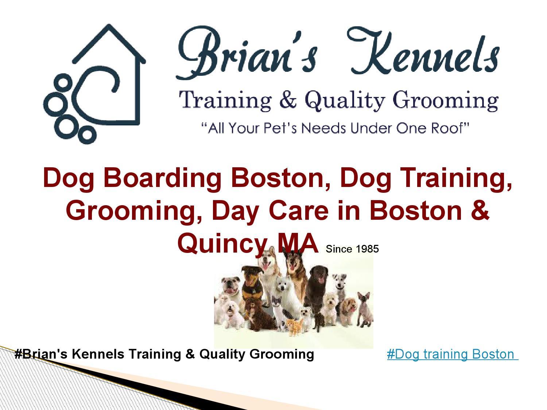 Dog Training Boston by brianskennels - issuu