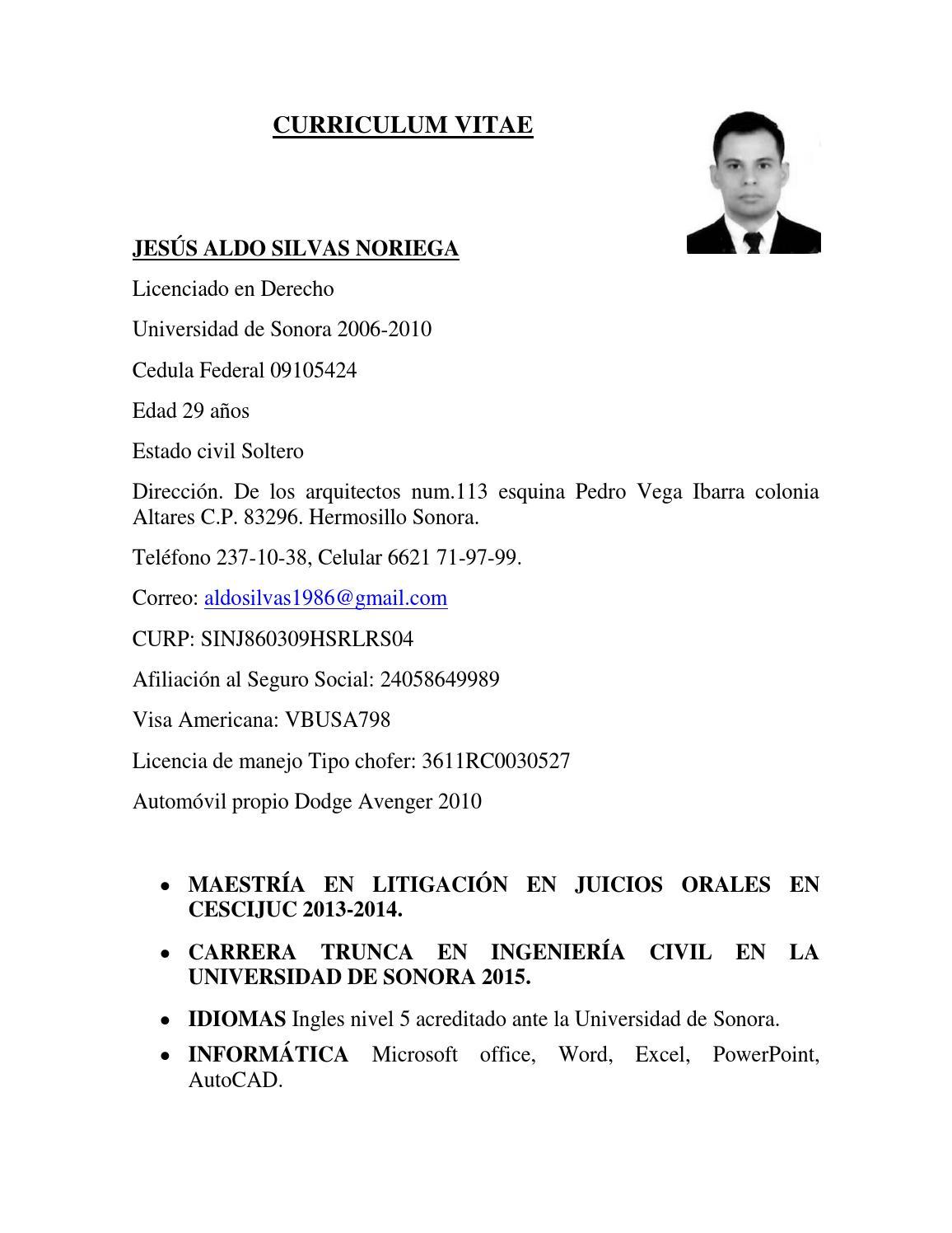 Magnífico Curriculum Vitae De Carrera Molde - Ejemplo De Colección ...