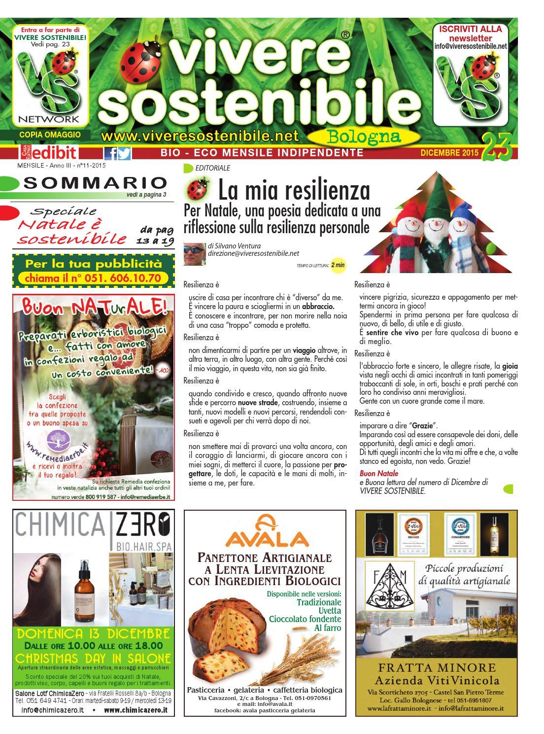9e6a2b43c7a2 Vivere Sostenibile a Bologna n. 23 dicembre 2015 by  Edibit Vivere Sostenibile - issuu
