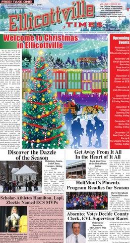 Sylvanian Families Creative Sylvanian Families Father Christmas & Tree Set Vgc Brown Bear Santa Neither Too Hard Nor Too Soft