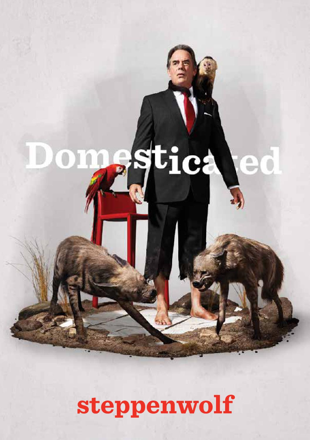 domesticated program by steppenwolf theatre company issuu