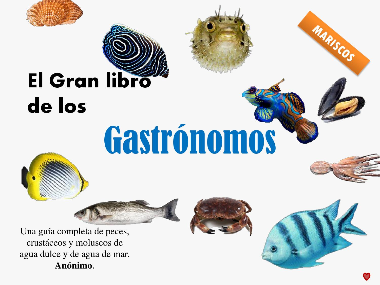 Mariscos y la gastronomia by Elyssa Yrigoyen - issuu