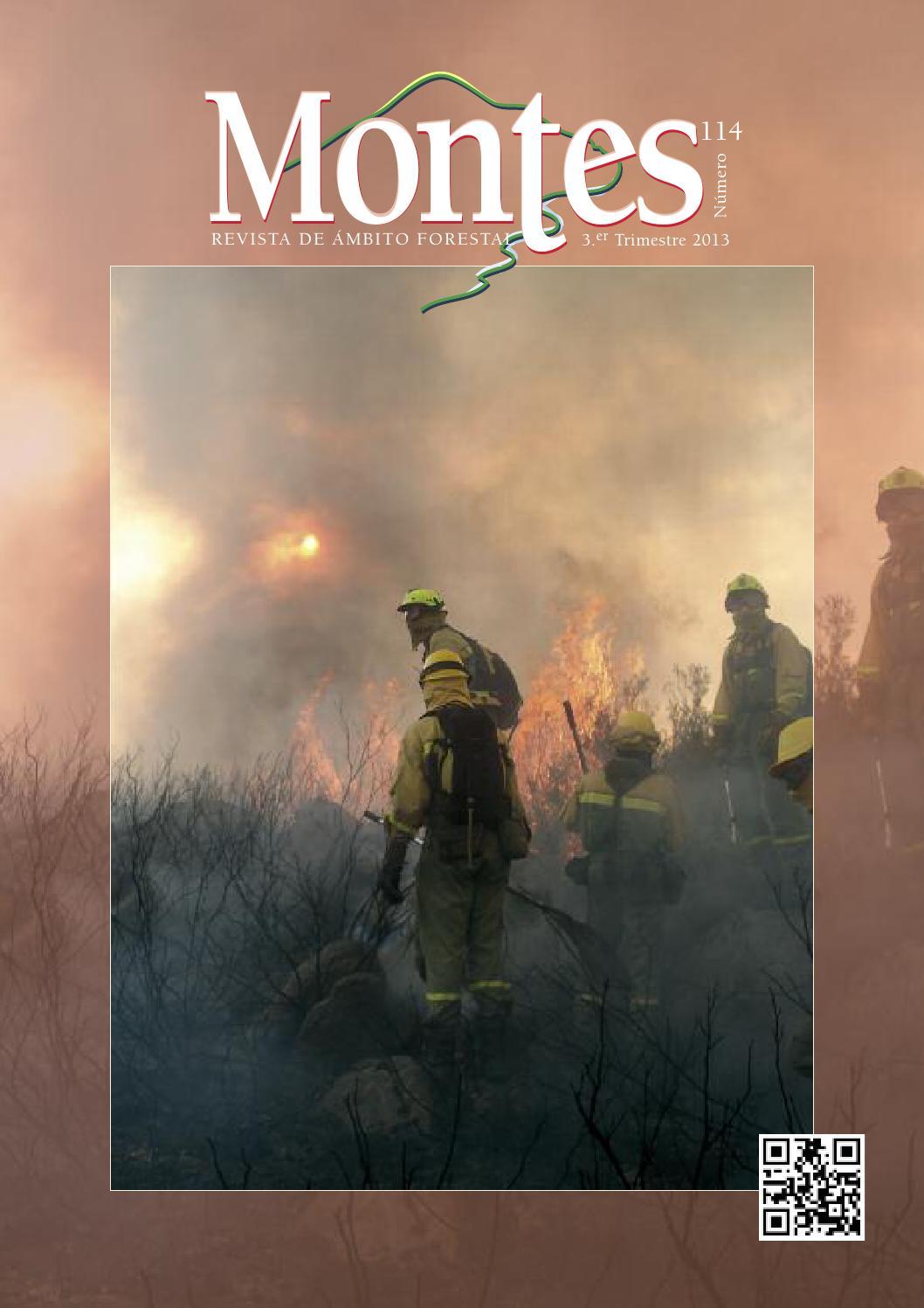 Montes, Revista de ámbito forestal. Número 114, III trimestre 2013 ...