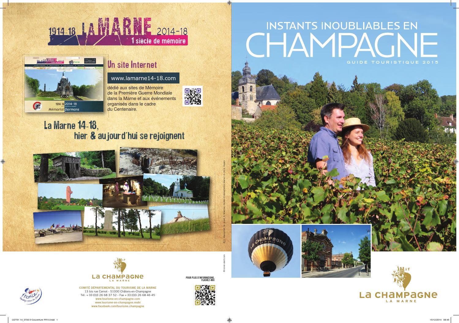 n°15 Millésime 2005 Capsule de Champagne DELOUVIN BAGNOST