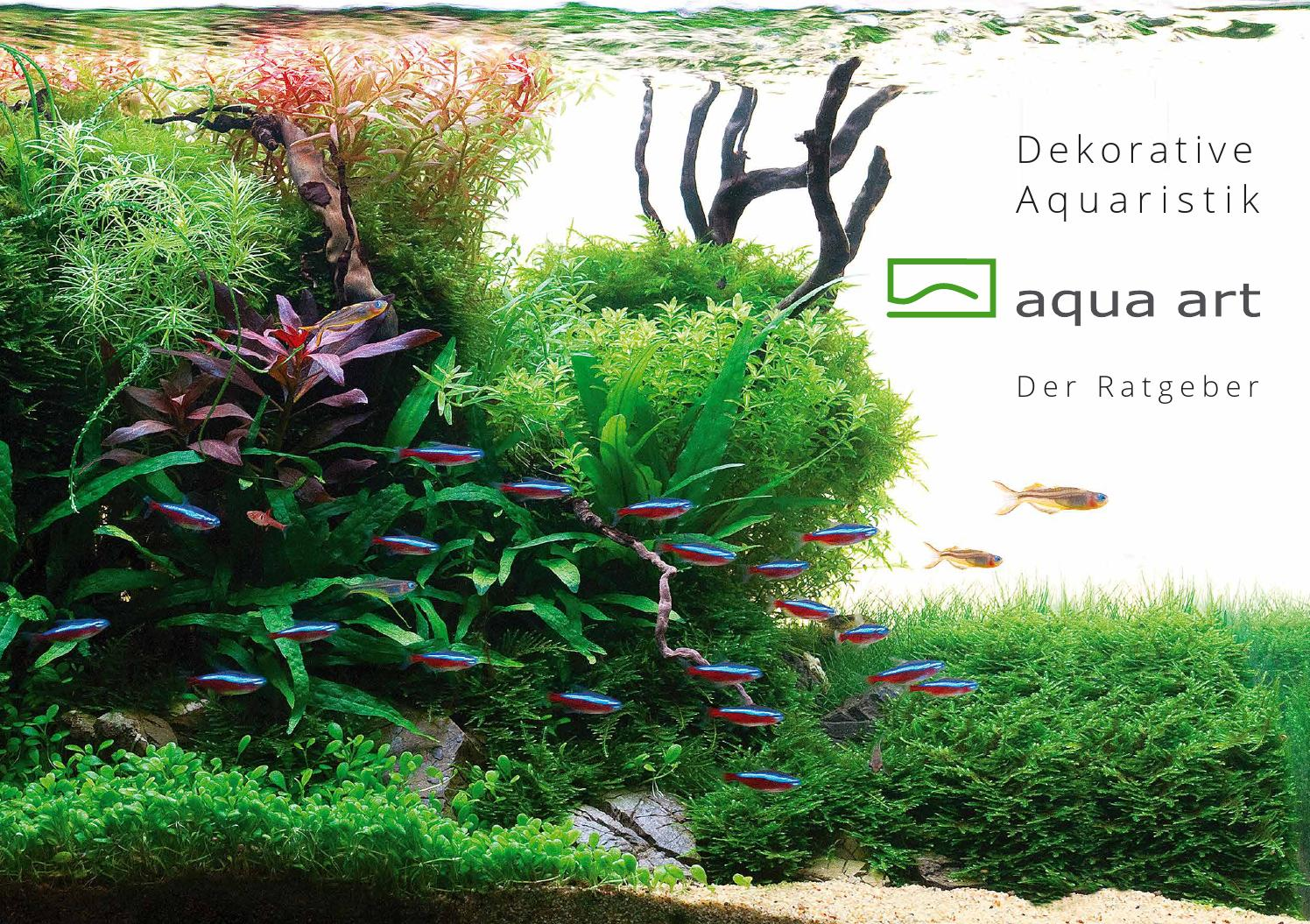 de-ornamental aquarium - ratgeber aqua art® by aqua art - issuu, Gartengerate ideen