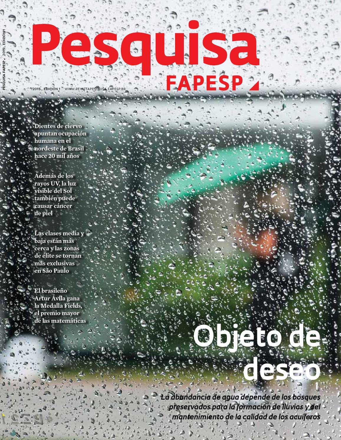 Objeto de deseo by Pesquisa Fapesp - issuu