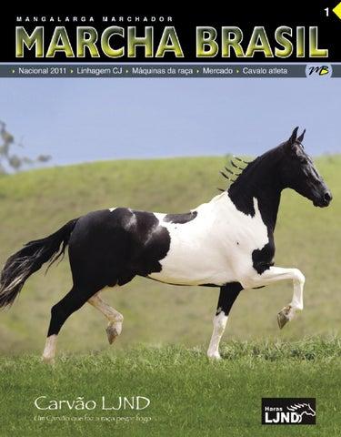 f695785300 Revista Marcha Brasil 1 by Daniela César - issuu