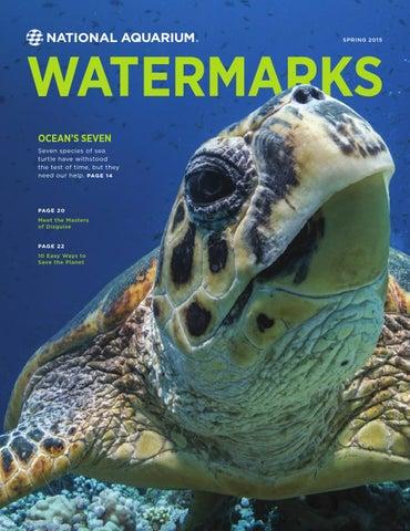 Watermarks spring2015 web