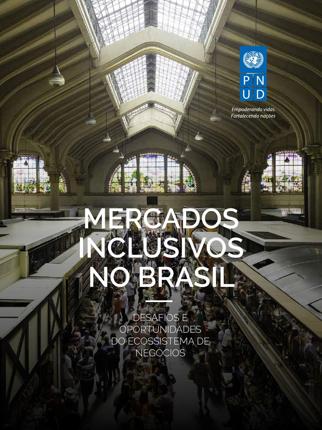 Relatório Mercados Inclusivos no Brasil by PNUD Brasil - issuu