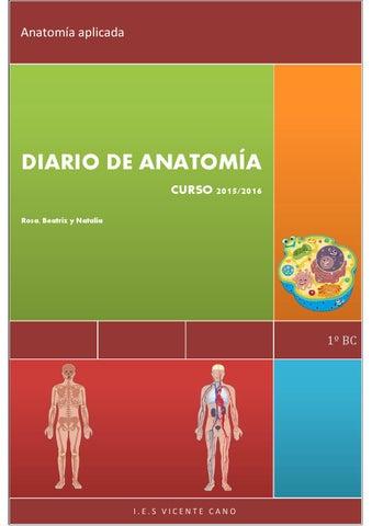 Diario de anatomía 2º parte by Robena - issuu
