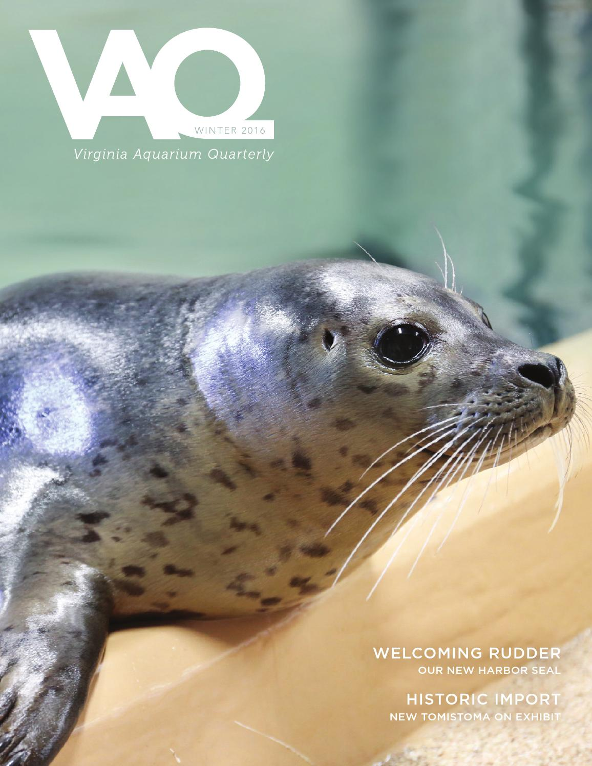 Winter 2016 vaq by virginia aquarium issuu for Fish store virginia beach