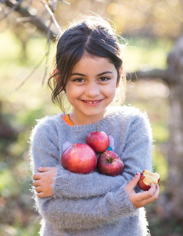 Page 16 of Bare Fruit: Discovering Connecticut's Heirloom Apples