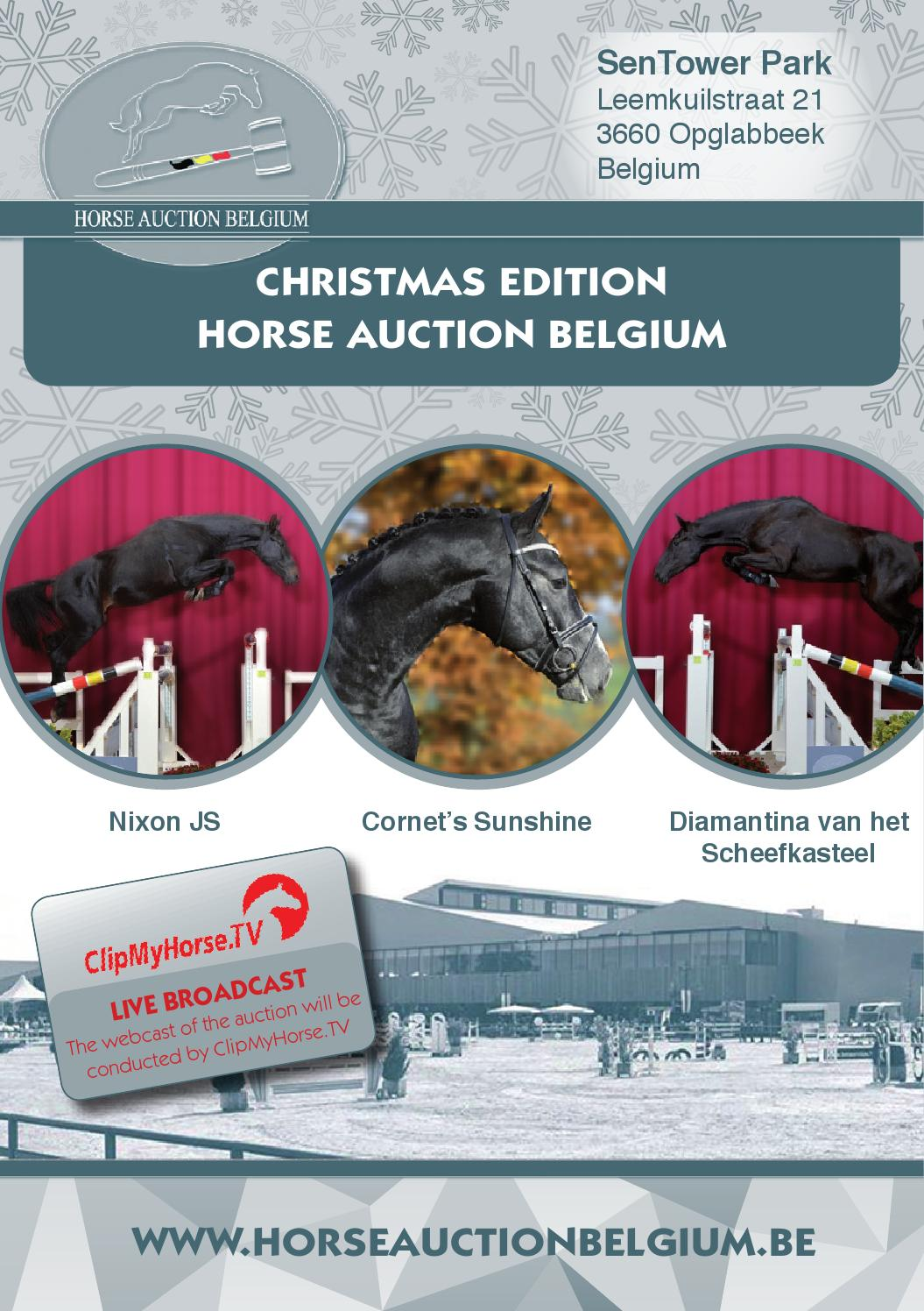 Pweb Solutions Auction Issuu Cataloog Belgium Horse By UzSpVqLMG