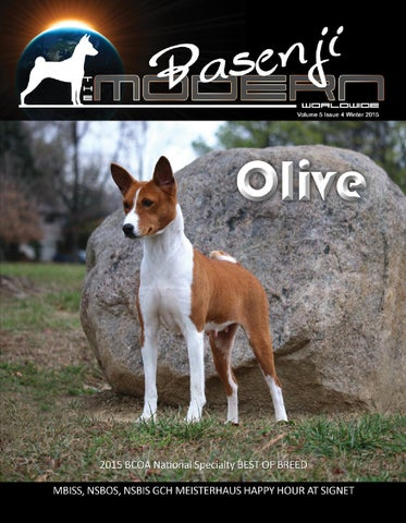 Tmb 4q 2015 by Modern Basenji - issuu
