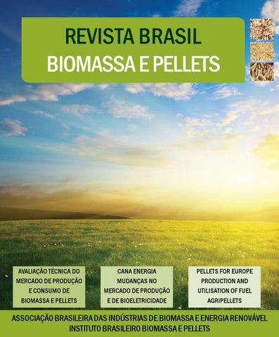 Revista brasileira biomassa e pellets by brazil biomass issuu page 1 fandeluxe Choice Image