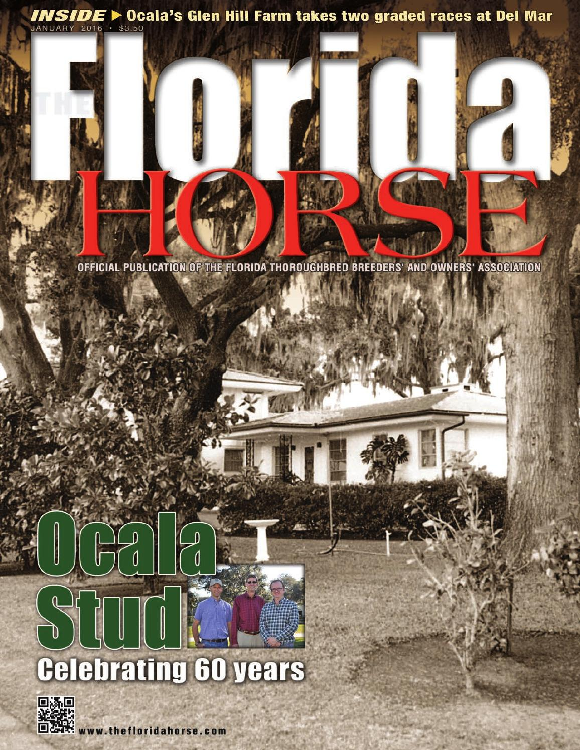 Jan Floridahorse2016 By Florida Equine Publications Issuu