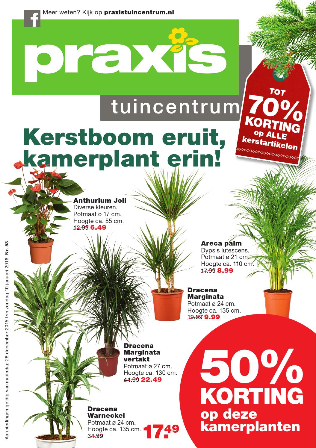 praxis tuin folder week 52 2015 by online folders issuu