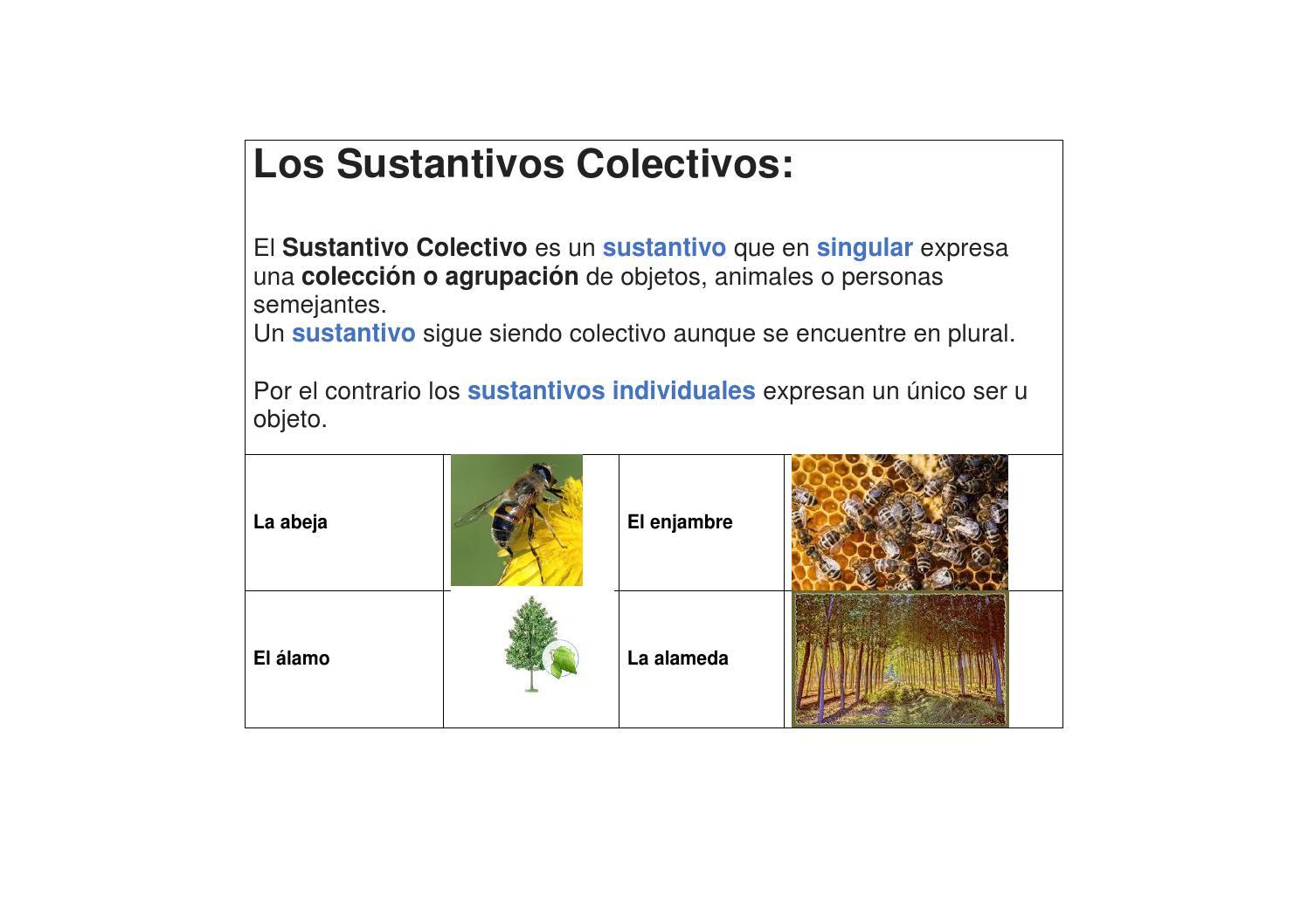 sustantivos colectivos by yossi estrugo issuu