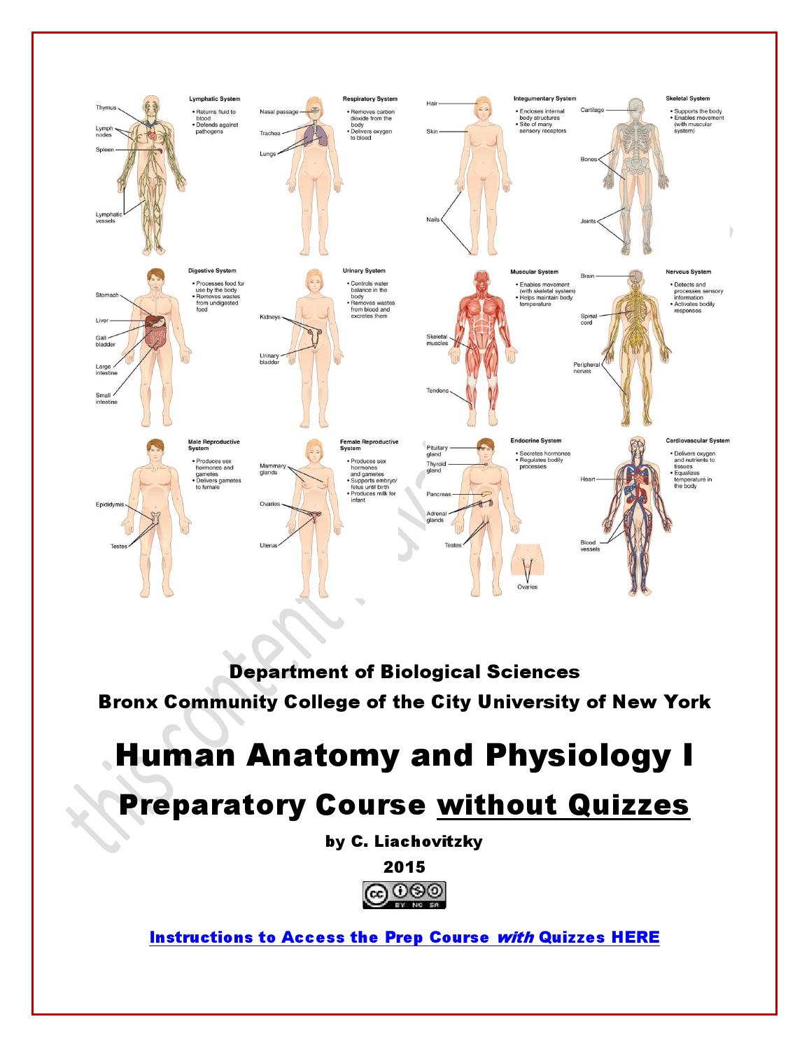 Human Anatomy and Physiology (A&P) Preparatory Course by Human ...