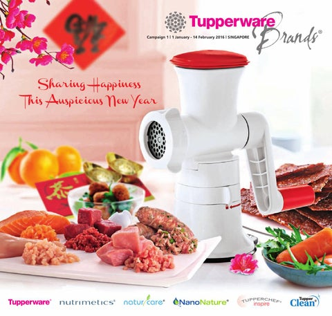 Image result for blend ayam tupperware