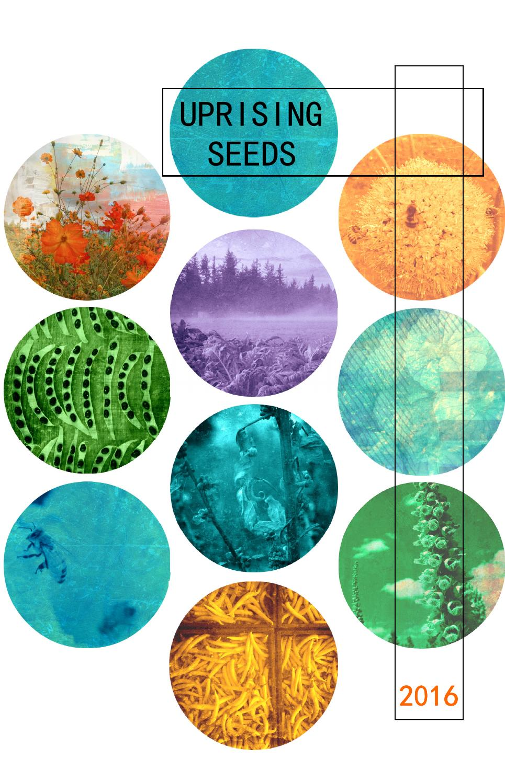 Uprising Seeds 2016 Catalog By Uprising Seeds Issuu