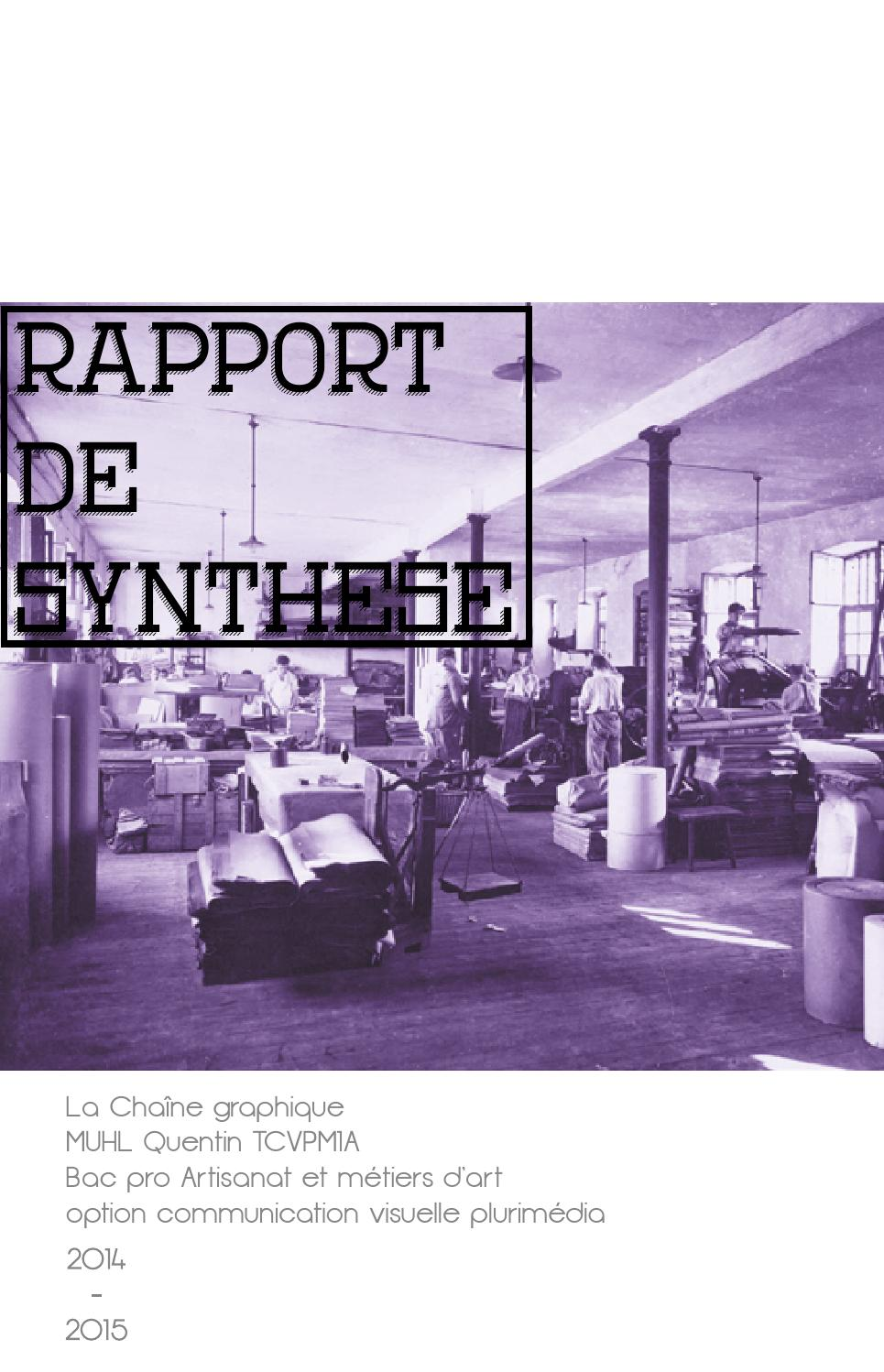 rapport de synth se i m moire de stage by quentin muhl issuu On bac pro artisanat et metier dart ebenisterie