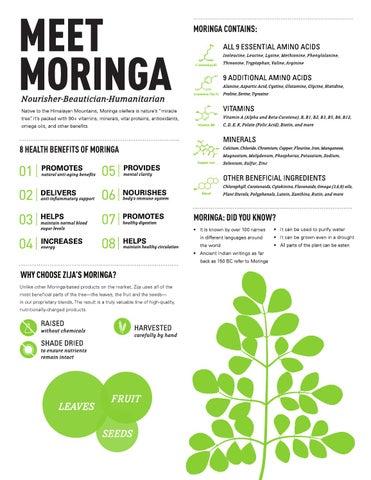 Zija Moringa Infographic 2 By Zija International Issuu