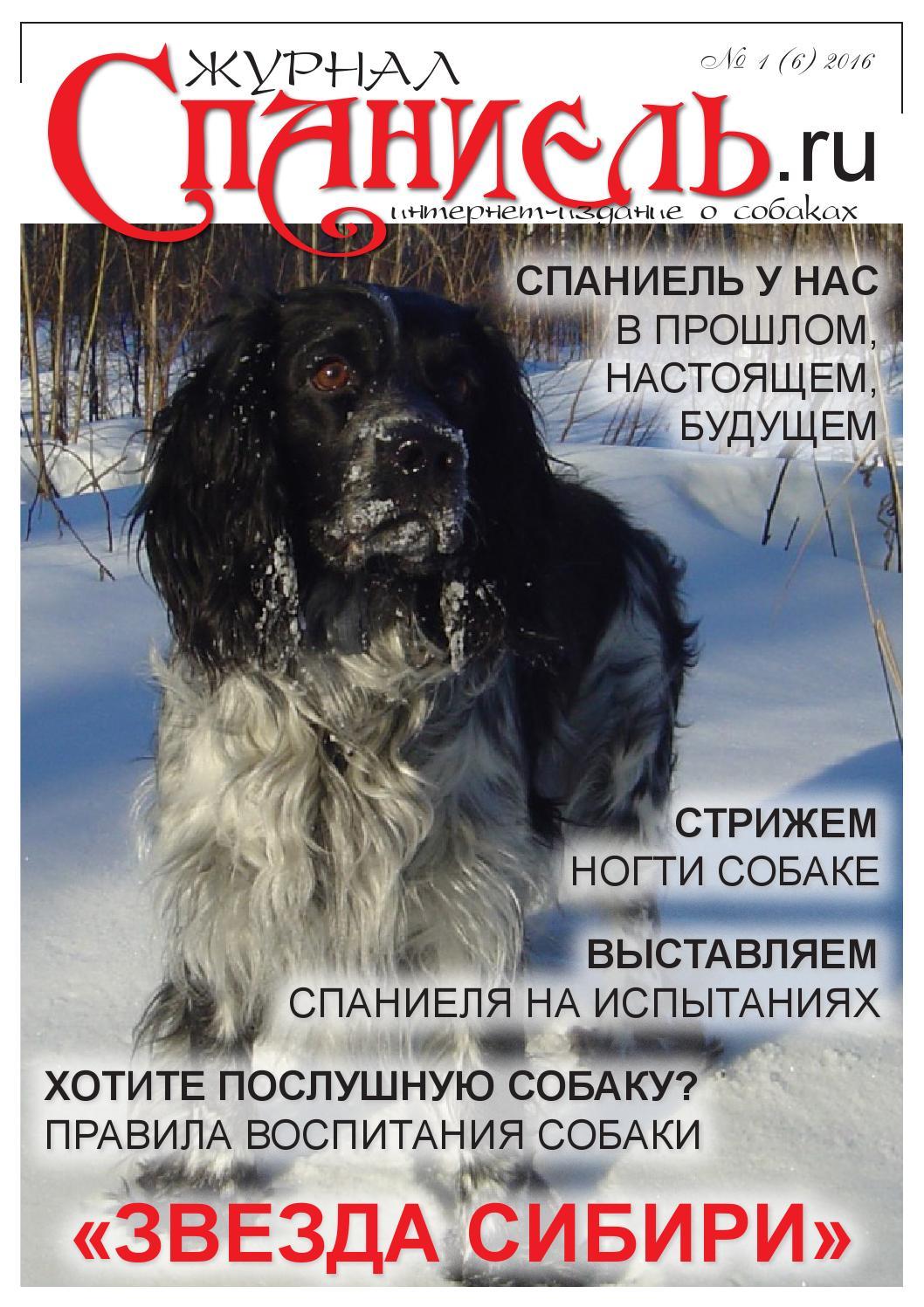 Компьютерная обработка: медведева т. Ю. Ерёмина е. Г. Pdf.