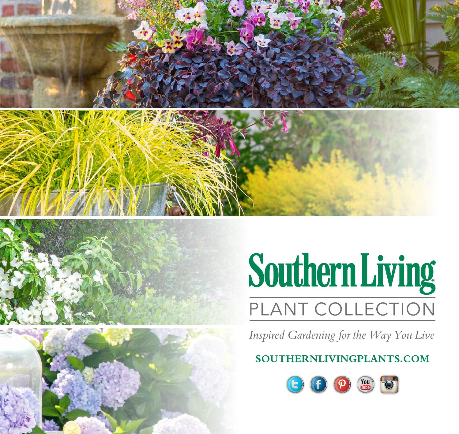 Southern Living Plant Collection : Southern Living Plant Collection 2016 Brochure by ...
