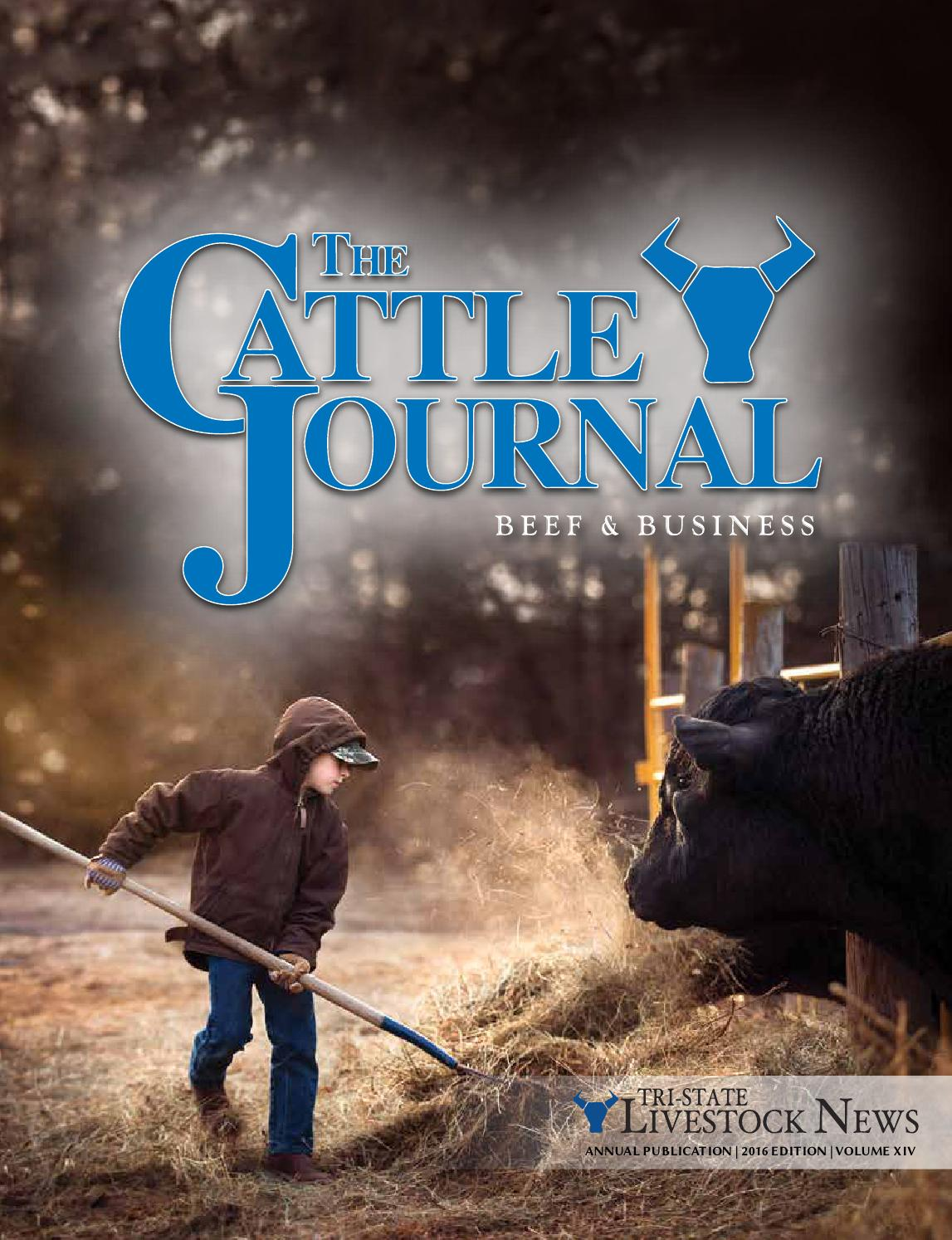 2X-Large Bob Dale 64-1-682-X2L Heavy Duty Brown Cow Side split Bib Overall Apron Brown