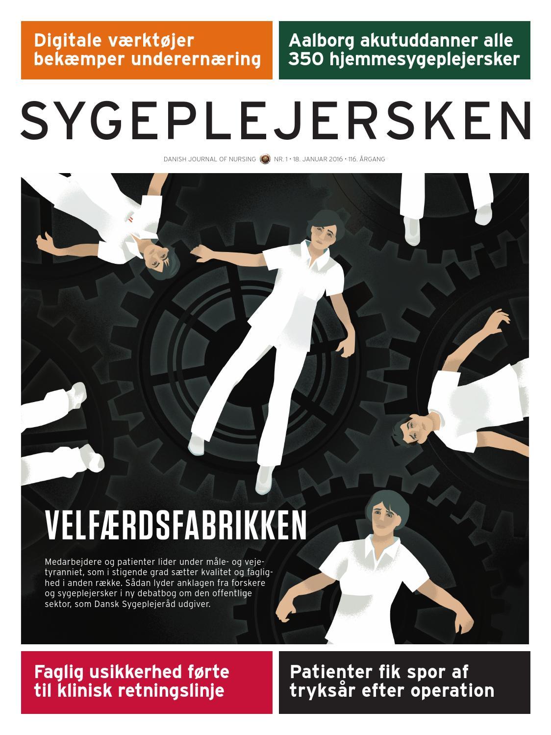 dansk sygeplejeråd ferieboliger