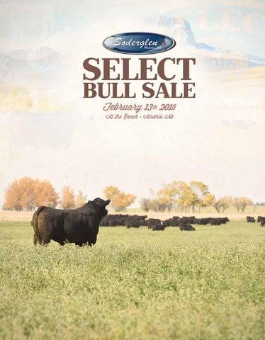 Soderglen Ranches Select 2016 Bull Sale by Soderglen Ranches Ltd