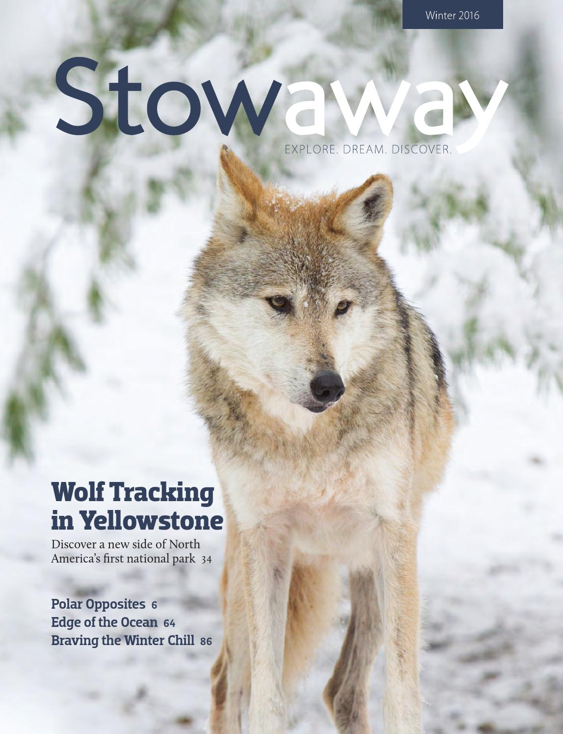 Stowaway winter 2016 by brigham young university editing students stowaway winter 2016 by brigham young university editing students issuu publicscrutiny Images