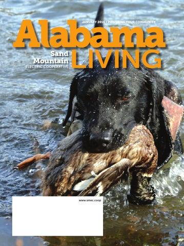 Sand Mountain Ec January 2016 Alabama Living By Alabama Living Issuu