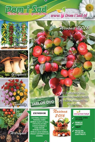 0c0186bfda41a6 Katalog domisad.pl 2016 by Michal - issuu