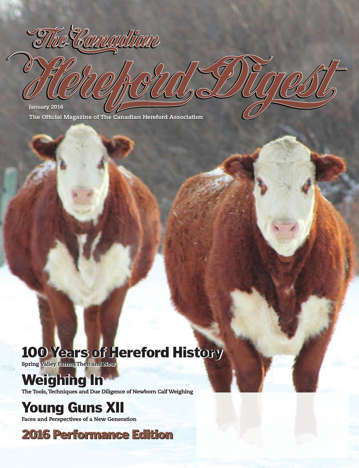 The Canadian Hereford Digest - Performance Edition by Canadian Hereford  Association - issuu