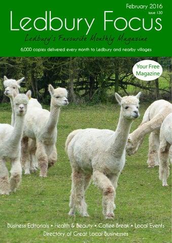Llama speed dating hereford