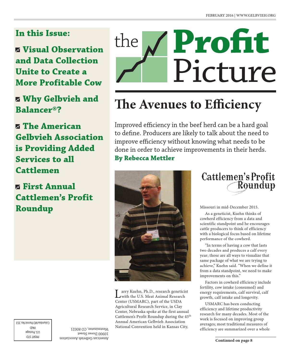 February 2016 Profit Picture by American Gelbvieh Association - issuu