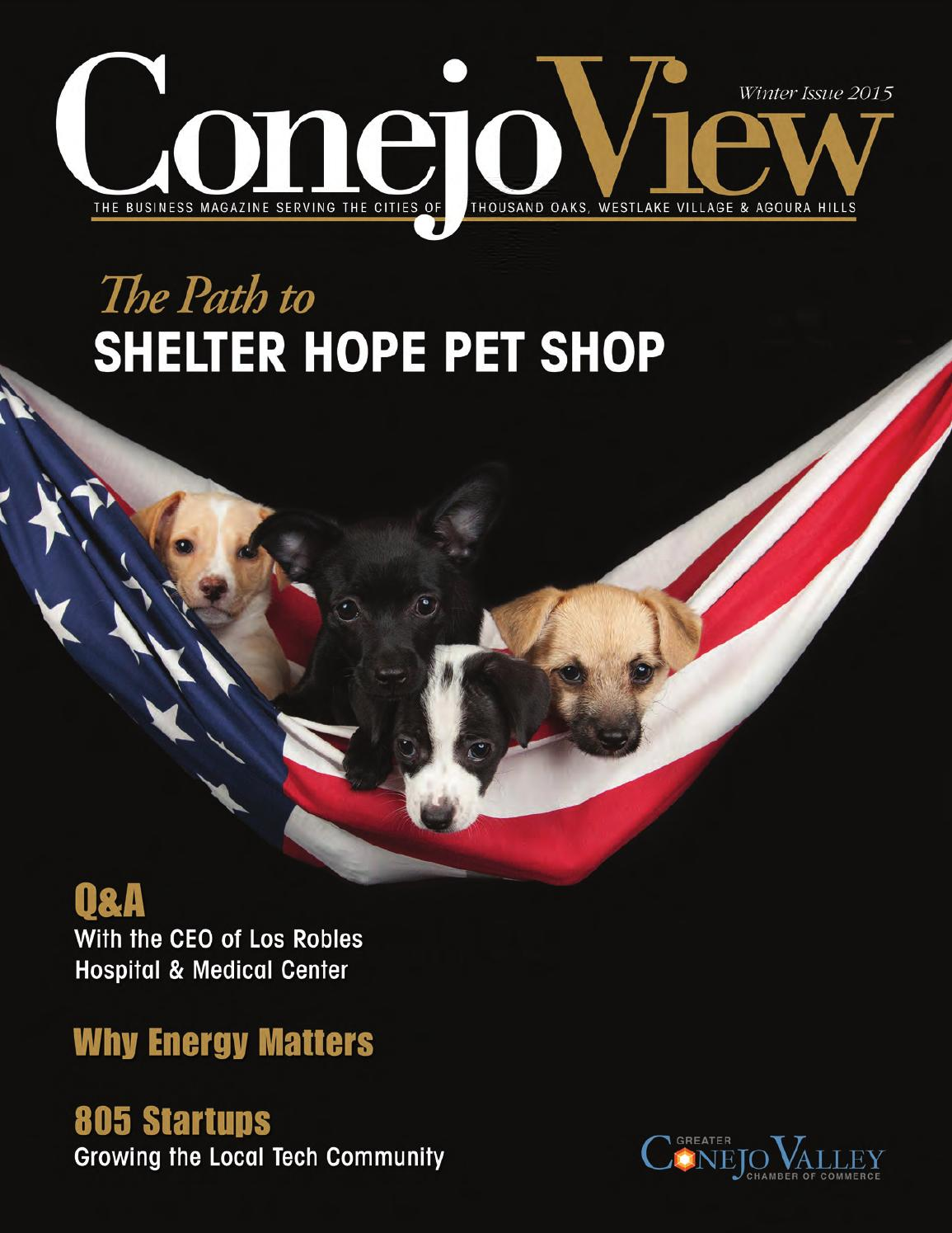 ConejoView CA Winter 2015 by Town Square Publications, LLC - issuu
