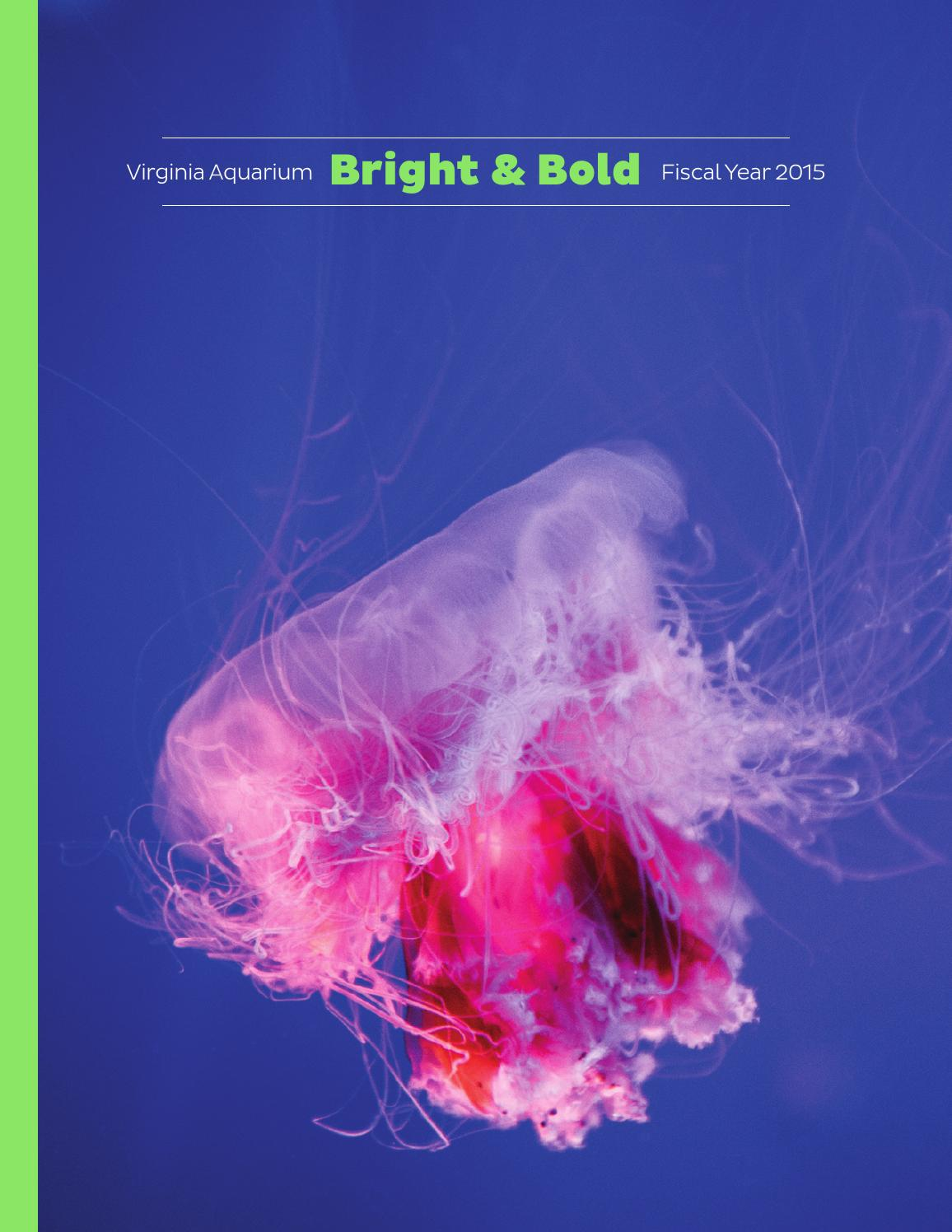 Bold bright 2015 annual report by virginia aquarium for Fish store virginia beach