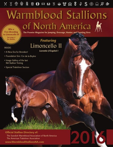 best sneakers 69c30 4ce87 Warmblood Stallions of North America 2016 by Warmblood Stallions of ...