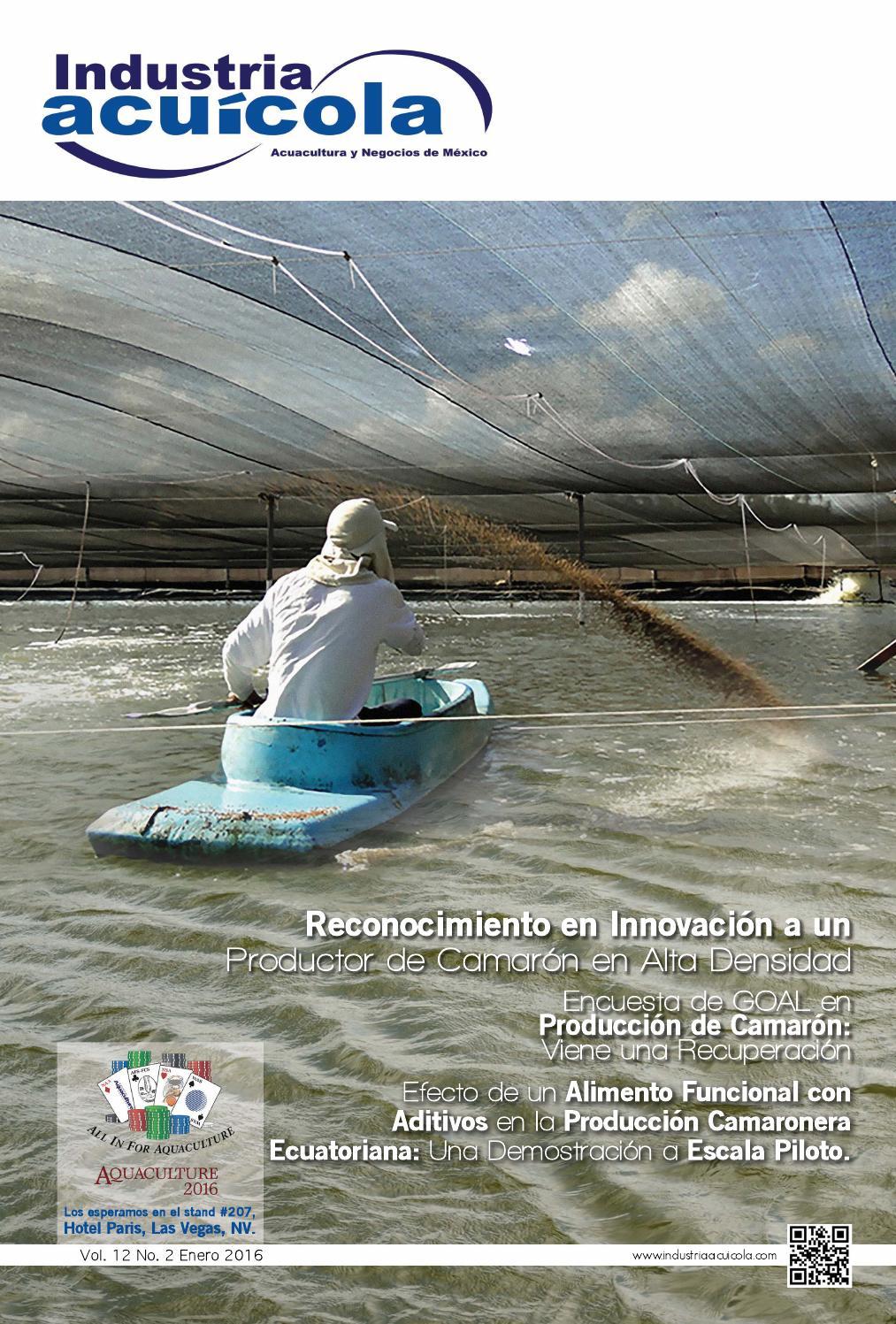 Revista industria acu cola 12 2 by aqua negocios sa de cv for Engorda de tilapia en estanques rusticos