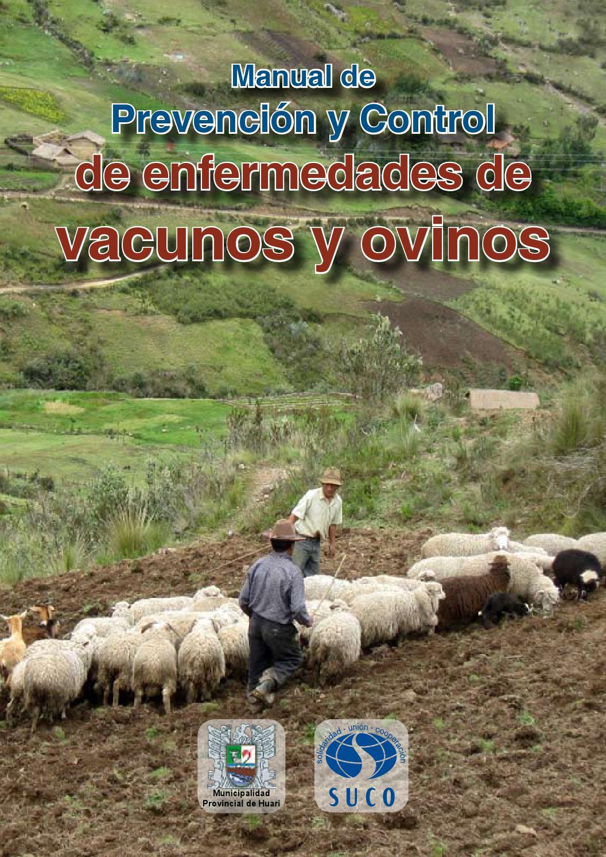 principales parasitos intestinales en ovinos