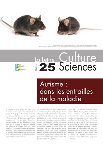 La lettre Culture Science n°25